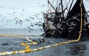 Justicia investigará posible pago de sobornos a senadores de la comisión de Pesca